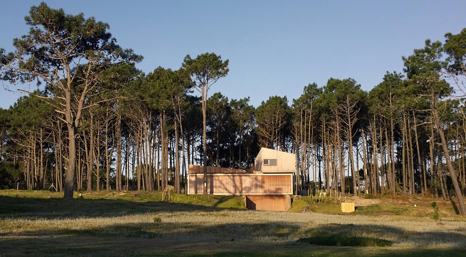 Pinar del Faro gyvenamasis vienbutis gamtoje (19)