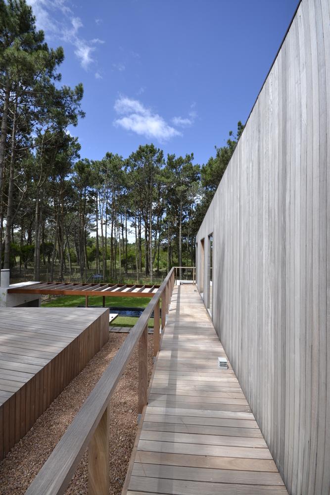 Pinar del Faro gyvenamasis vienbutis gamtoje (5)
