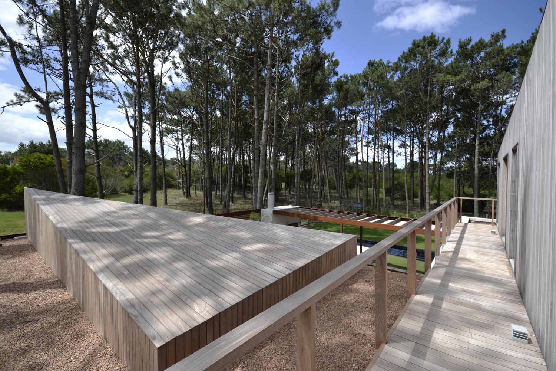 Pinar del Faro gyvenamasis vienbutis gamtoje (6)