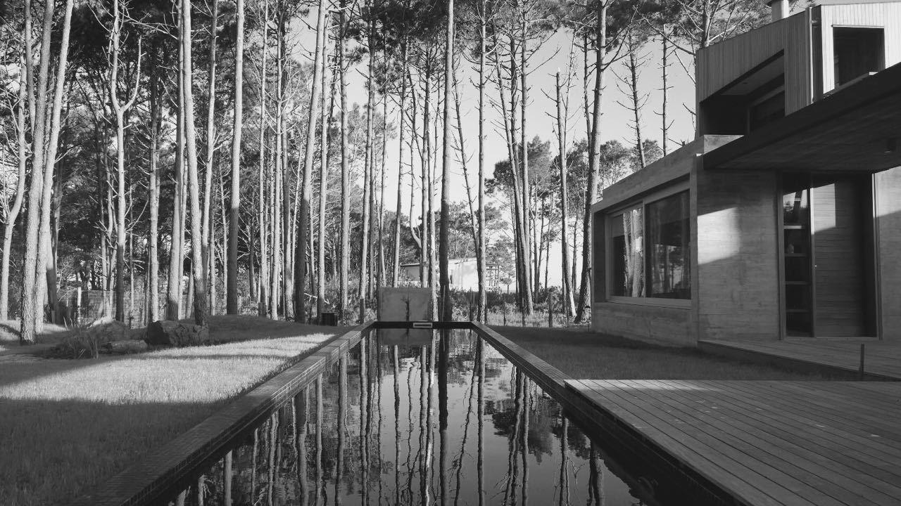 Pinar del Faro gyvenamasis vienbutis gamtoje (8)