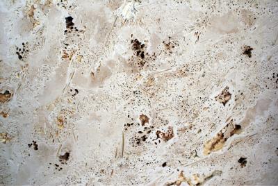 travertino akmuo